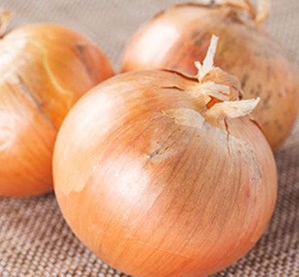 玉ねぎのイメージ写真