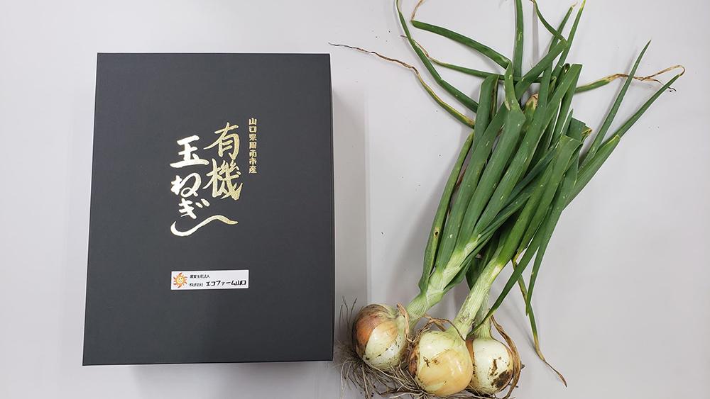 有機野菜(玉ねぎ)の贈答用箱